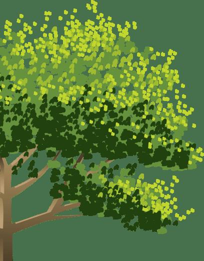 Дерево отзывов