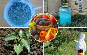 Медный купорос и Бордосская жидкость для обработки деревьев и кустарников