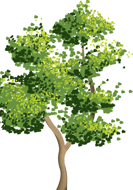 Дерево Преимущества