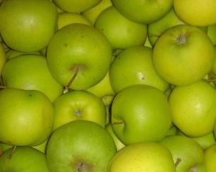 Яблоня Мутсу 5