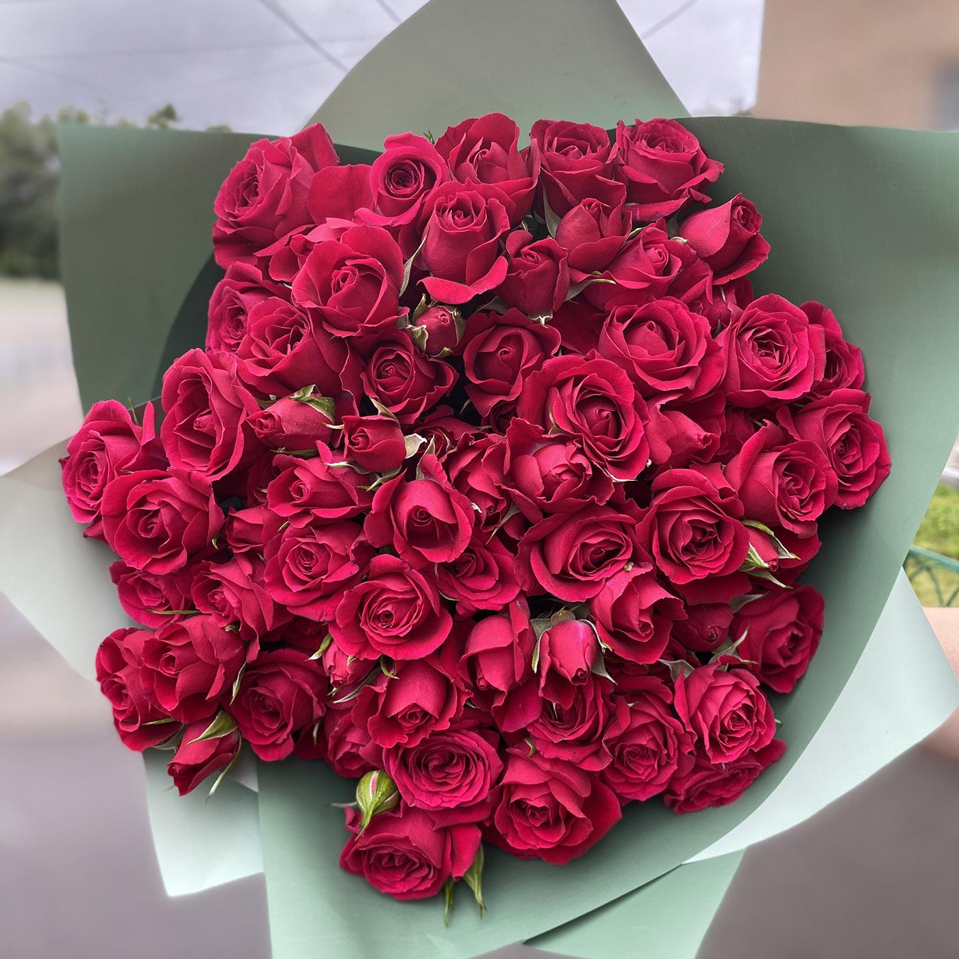 Роза Алисия изображение 4