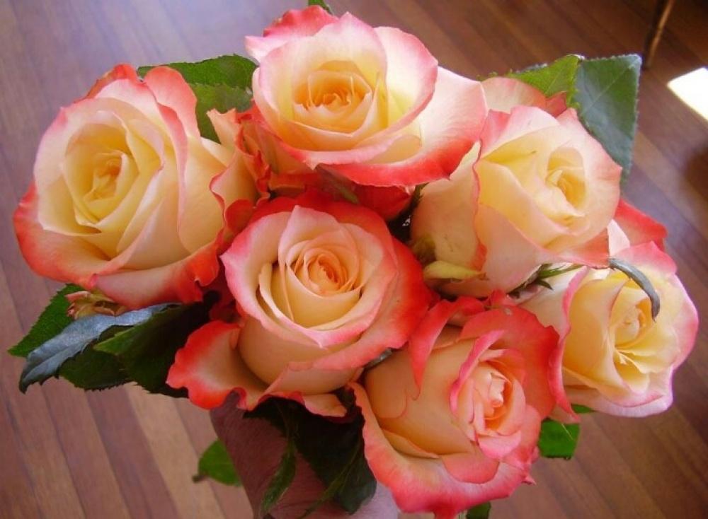 Роза Кабарет 4
