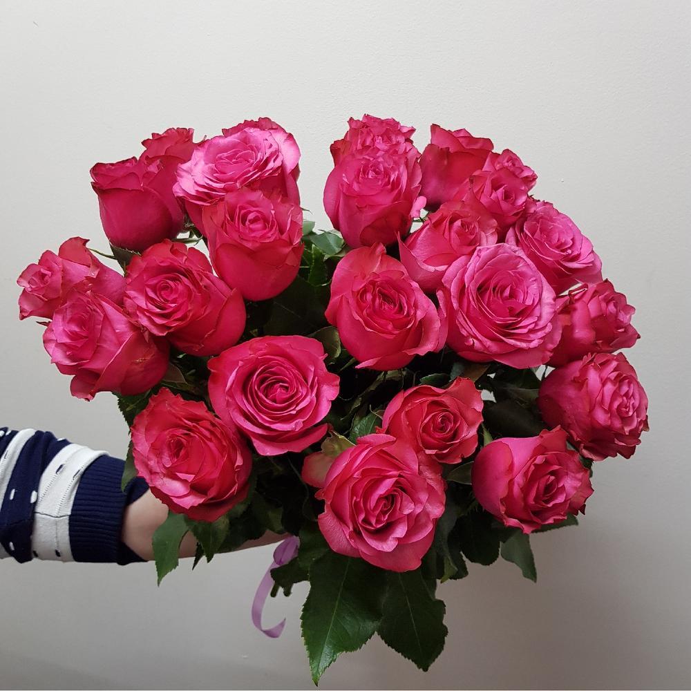 Роза Лола Паола изображение 2