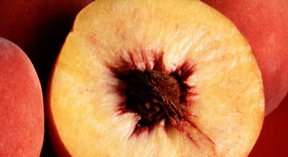 Персик Ирганайский поздний 3