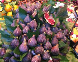 Инжир Абхазский фиолетовый